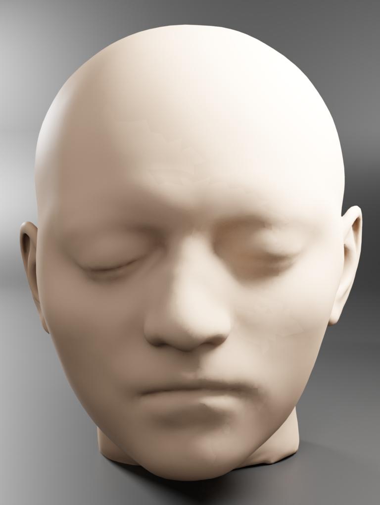 Facial reconstruction of Bruto